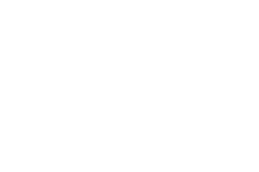 Standard gallery post